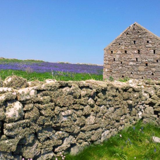 Inishmurray House Gable & Wall